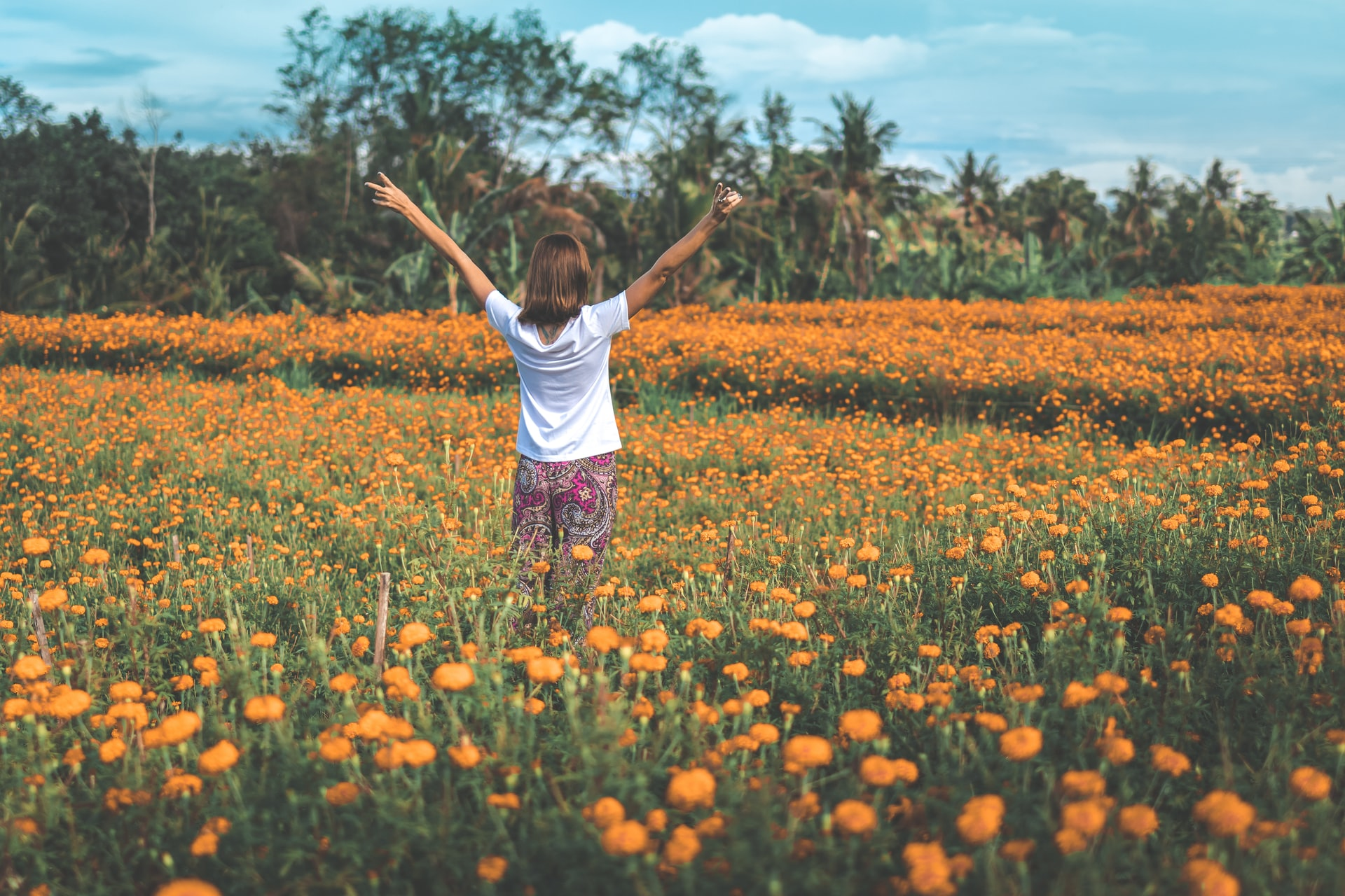 Para viver uma vida em abundância é preciso atrair abundancia